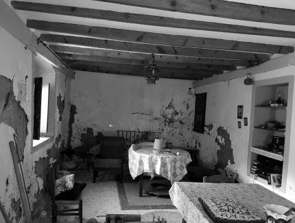 Recuperación de la Huerta de El Pilar Image